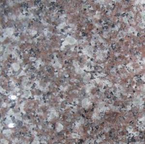 Polished G664 Granite Stone with 1-5cm Thickness for Slab, Tile