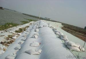 Low Enlongation Filament PP or PET Woven Geotextile
