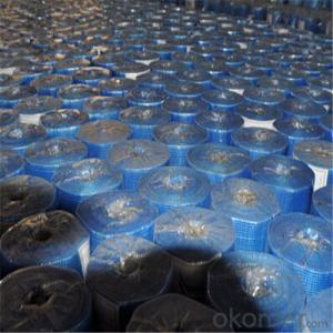 Coated Alikali-Resistent Fiberglass  Wall Mesh 70g 5x5