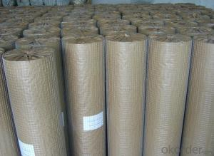 Galvanized and PVC Coated Welded Wire Mesh (20years Factory & ISO9001 Approved)