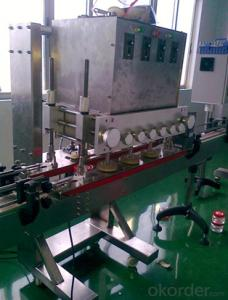 Automatic Inline Capping Machine for Packaging