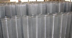Galvanized / PVC Coated Welded Wire Mesh (20years factory & ISO9001 Approved)
