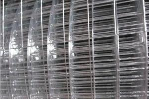 Best Seller PVC Coated Welded Wire Mesh in Roll