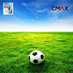 Indoor Soccer Field/Soccer and Football Grass/Artificial Grass Yarn