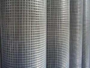 Best Seller Galvanized Iron Welded Wire Mesh