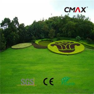 Artificial Grass for Leisure &Landscape Use