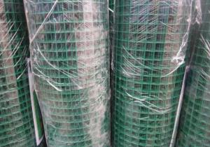 PVC Coated Welded Wire Mesh in High Quality
