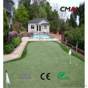 Resilience Artificial Grass for Garden/Backyard with High Quality