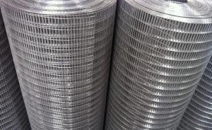 Galvanized PVC Coated Welded Wire Mesh with (CE and SGS)