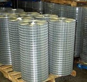 Electro-Galvanized Square Welded Wire Mesh for Construction