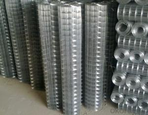 Electro Galvanized Welded Wire Mesh after Weldiing