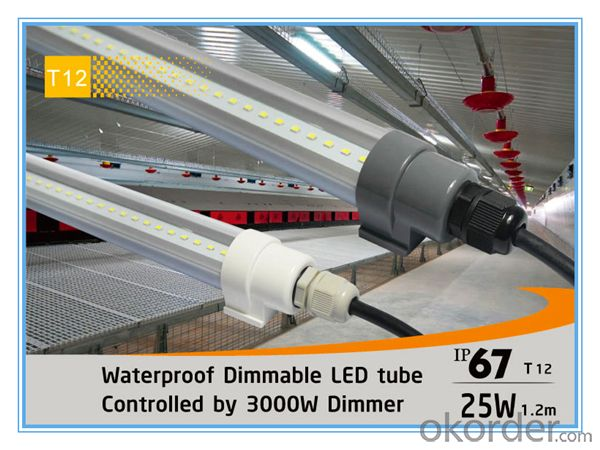 Waterproof IP67 1.2mx25W 3000W Dimmable T12 LED Tube