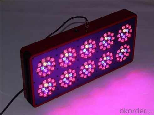 60 Watt LED Tunnel Hot Sale Factory PriceCOB 30W 60W 100W 150W