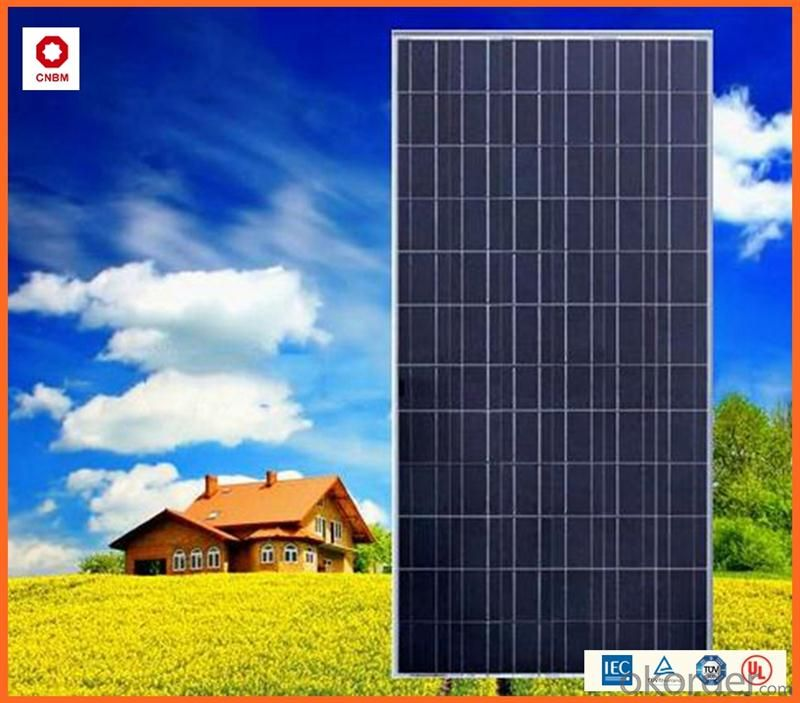 Solar 260W Monocrystalline Silicon Solar Module With CE/IEC/TUV/ISO Approval Standard Solar