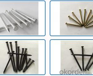 Different Sizes the Concrete Nails From China  Customised Brand
