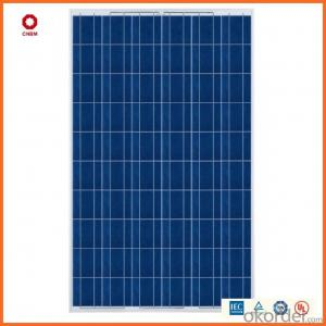 305W Monocrystalline Silicon Solar Module With CE/IEC/TUV/ISO Approval Standard Solar