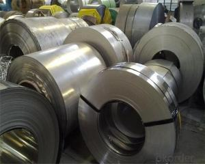Stainless Steel Coil Chinese Supplier Hot Sale 304 304L