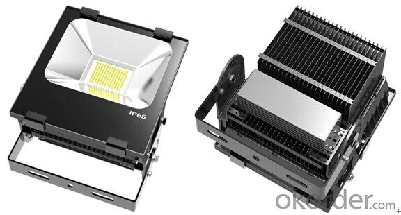 Outdoor Led Flood Lighting HOT Sales High Power CE RoHS IP65 100W