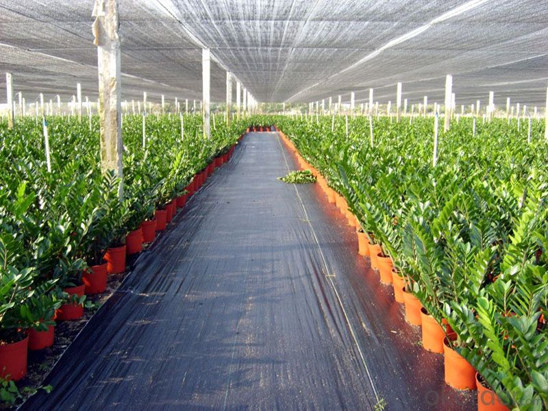 Silt Fence with Pocket/ Polypropylene Woven Fabric/ Landscape