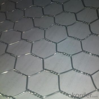 Galvanized Hexagonal Wire Mesh 0.42 mm Gauge