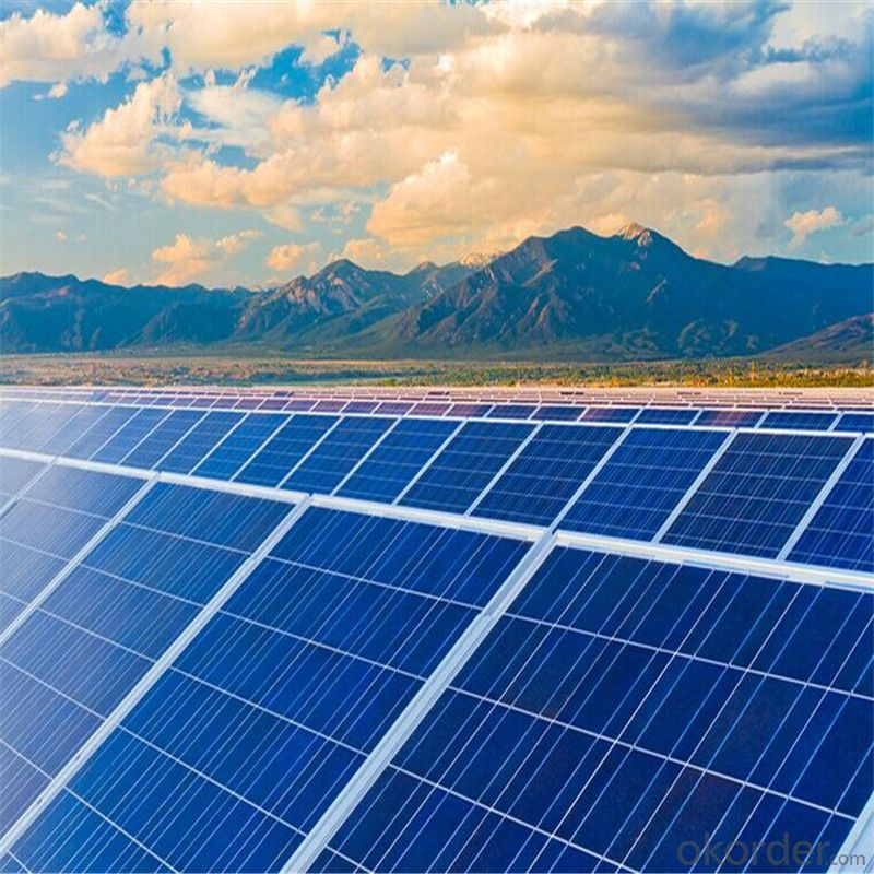 55 Watt Photovoltaic Poly Solar Panels