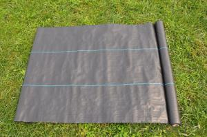 PP Woven Geotextile/ Polypropylene Fabric with Green Lines