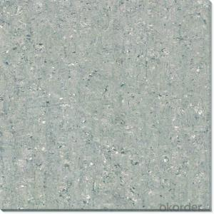 Polished Porcelain Tile Double Loading CMAX6J07/6J08/6J09