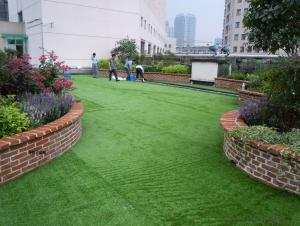 Stocked Garden Landscape Artificial Grass in Stock CMAX