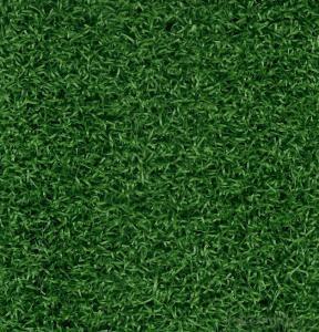 PU Backing Garden Use Attractive Artificial Grass