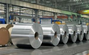 Aluminum Foil for Kitchen good sells in European market