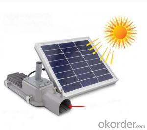 12W Outdoor Solar LED Street Garden Lights with Solar Panel (CE RoHS)
