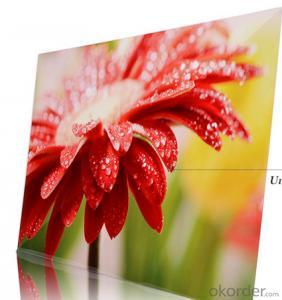 2015 Sublimation Metal Sheet HD Aluminum Metal Photo Panel