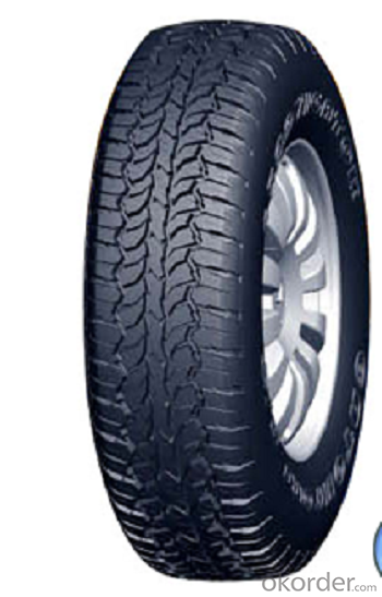 Passager Car Radial Tyre A929 with High Speed