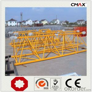 Tower Crane TC6520 VFD PLC CMAX Brand in China