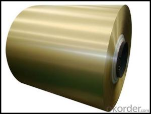 Brushed Sheet Metal Aluminum with Low Price China Supply