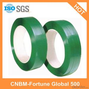 Green Polyester Pet Webbing Strap Recycle