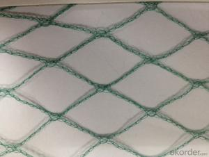 Plastic  Anti-Birds Net white Green for Agriculture Manufacturer