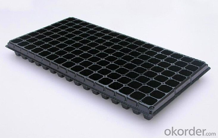 Flat Plastic Seedling Tray,Seed Tray, Cell Tray, PS Material