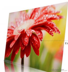 Supplier Aluminium Metal Art Pictures Print On HD Aluminium Metal Panel
