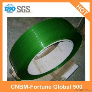 Polyester Strapping Custom Made China Factory