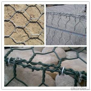 PVC Coated Hexagonal Wire Mesh Netting for Chicken