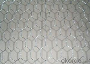 Hexagonal Wire Mesh Factory Supply In High Quality