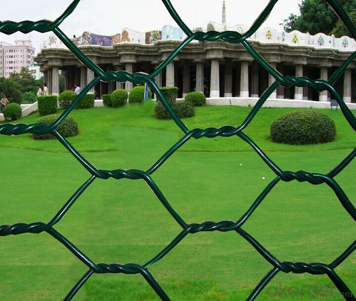 Galvanized Hexagonal Wire Mesh Hot Sale And Low Price