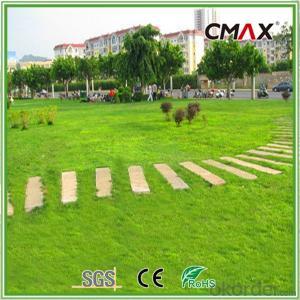 PE Straight Yarn/PP Curly Monofilament Yarn Landscaping Grass