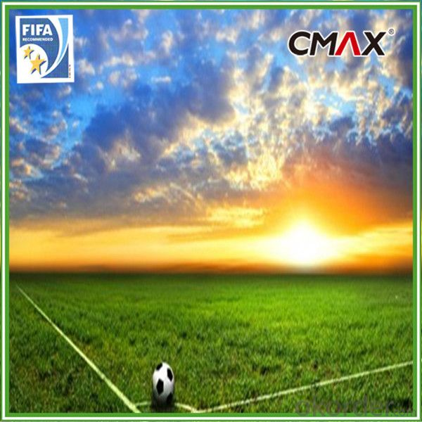 Football Artificial Grass Turf with PP net cloth backing Financial