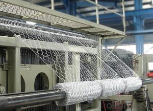 Gabion Box/Mattress/Hexagonal Wire Mesh in High Quality