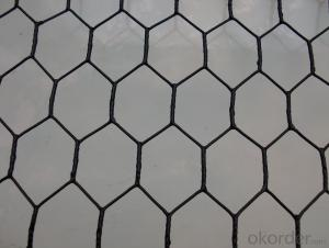 Galvanized Chicken Wire Mesh/Hexagonal Wire Mesh From China