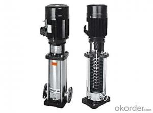 Vertical Multistage  Centrifugal Pump With Competitive Price