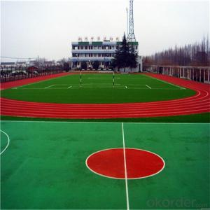 Running Track with 25mm Height and 12000Dtex