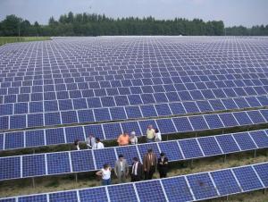 Polycrystalline  Solar Panels 230W With High Efficiency
